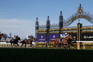 Flemington Finishing Post Shade