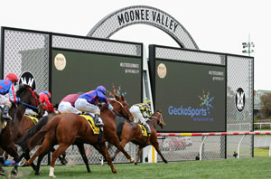 Moonee Valley home straight 240818