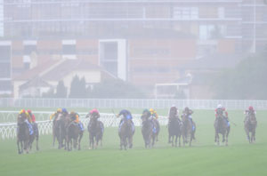Randwick Racecourse Wet