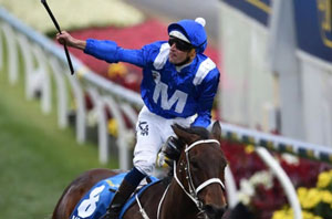 Winx Cox Plate Moonee Valley
