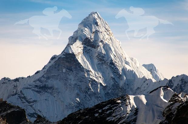The Everest Horse Race