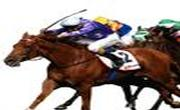 tipster/basman-racing-tips